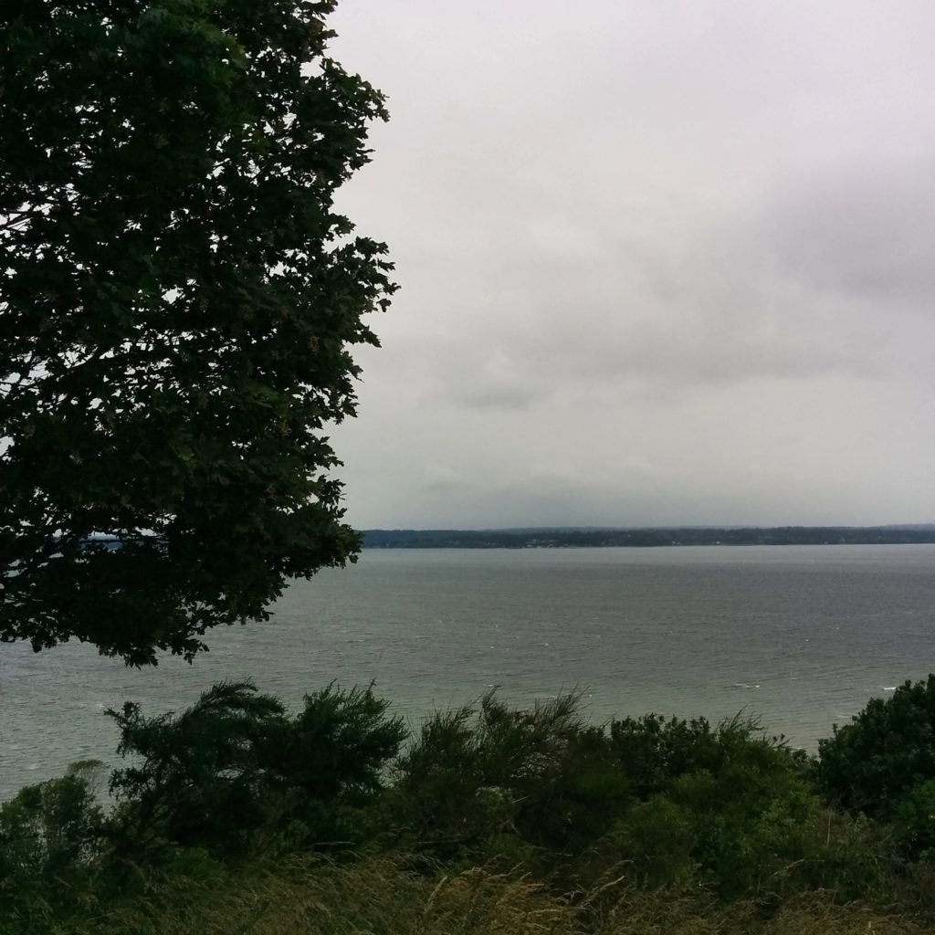 One of the great views from Discovery Park bluff.