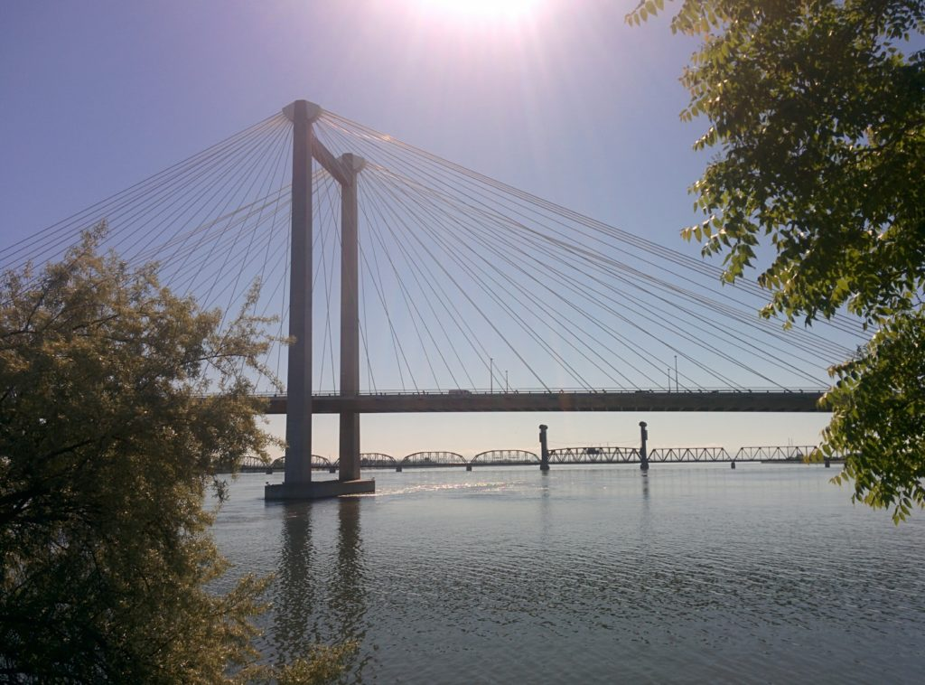 A suspension bridge spans across the Columbia river. The sun beams down from the top of the frame. A few bushes and trees appear on the edges, closer to the camera, but do not obscure the bridge.