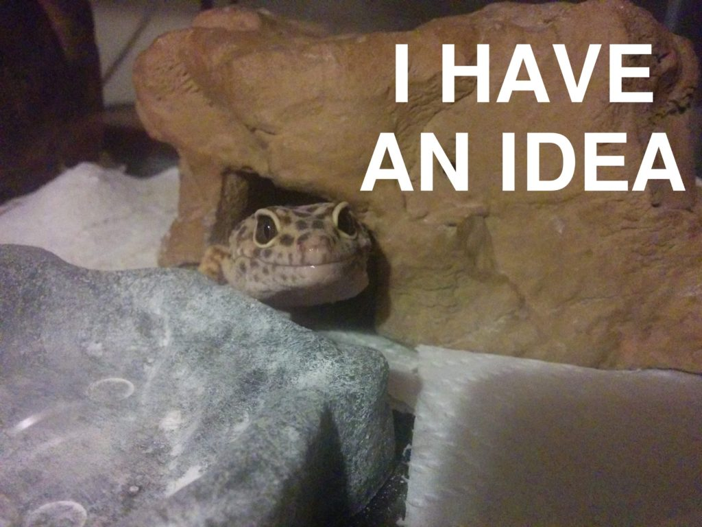 """Jerry the leopard gecko peeking out of his hide with """"I HAVE AN IDEA"""" written in large white text next to him."""